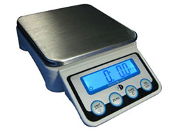 PS10 Portion Control Scale